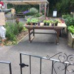 Glencliffe Community Garden